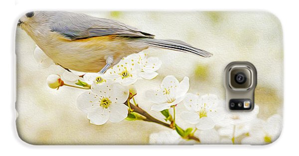Titmouse Galaxy S6 Case - Tufted Titmouse With Seed by Laura D Young