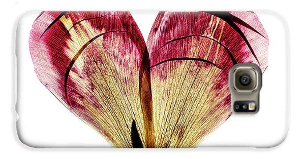 Tulip Galaxy S6 Case - Tulip Heart by Nailia Schwarz