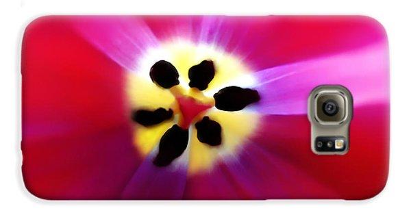 Tulip Vivid Floral Abstract Galaxy S6 Case