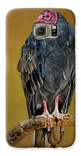 Turkey Vulture Galaxy S6 Case by Nikolyn McDonald