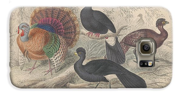 Turkeys Galaxy S6 Case by Dreyer Wildlife Print Collections
