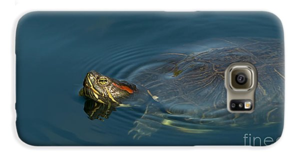 Turtle Floating In Calm Waters Galaxy S6 Case