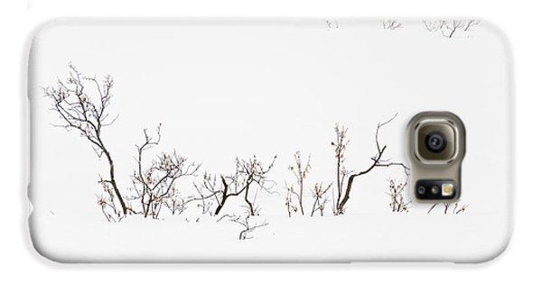 Twigs In Snow Galaxy S6 Case