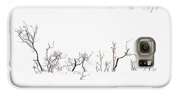 Twigs In Snow Galaxy S6 Case