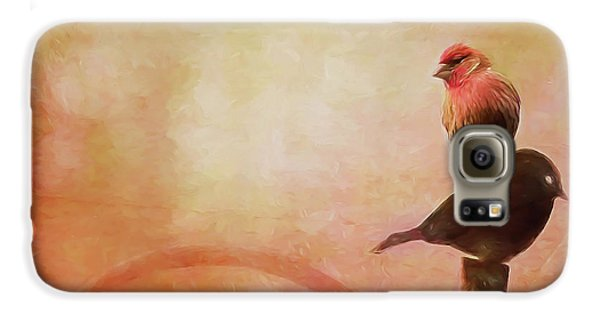 Two Birds In The Mist Galaxy S6 Case
