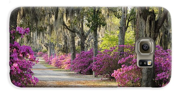 Unpaved Road With Azaleas And Oaks Galaxy S6 Case