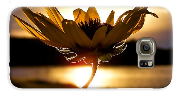 Flowers Galaxy S6 Case - Uplifting by Karen Scovill