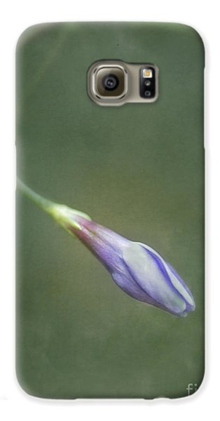 Flowers Galaxy S6 Case - Vinca by Priska Wettstein