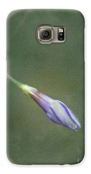 Flowers Galaxy S6 Case - Vinca by Priska Wettstein