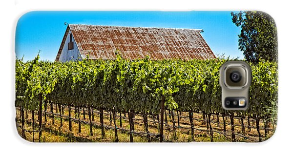 Vines And Barn Galaxy S6 Case by Kim Wilson