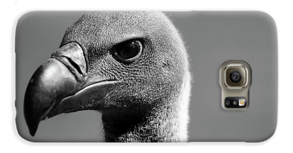 Vulture Eyes Galaxy S6 Case by Martin Newman