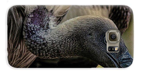 Vulture Galaxy S6 Case