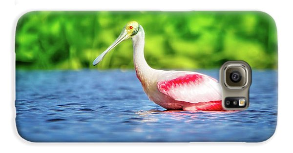 Wading Spoonbill Galaxy S6 Case by Mark Andrew Thomas