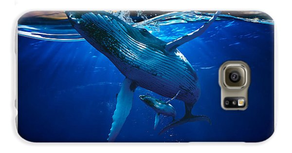 Whale Watching Art Galaxy S6 Case