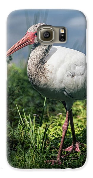 Walk On The Wild Side  Galaxy S6 Case