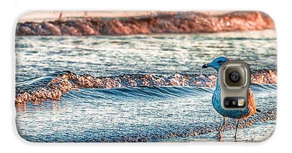 Animals Galaxy S6 Case - Walking On Sunshine by Mathias Janke