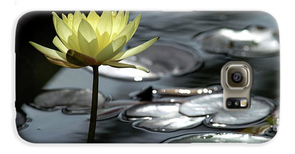 Water Lily And Silver Leaves Galaxy S6 Case