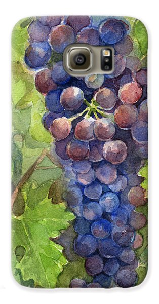 Watercolor Grapes Painting Galaxy S6 Case by Olga Shvartsur