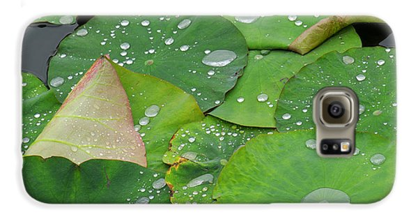 Lily Galaxy S6 Case - Waterdrops On Lotus Leaves by Silke Magino