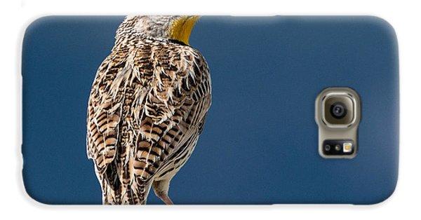 Meadowlark Galaxy S6 Case - Western Meadowlark by Dawn Key