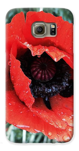 Galaxy S6 Case - Wet Poppy by Orphelia Aristal