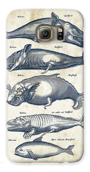 Whale Historiae Naturalis 08 - 1657 - 41 Galaxy S6 Case by Aged Pixel