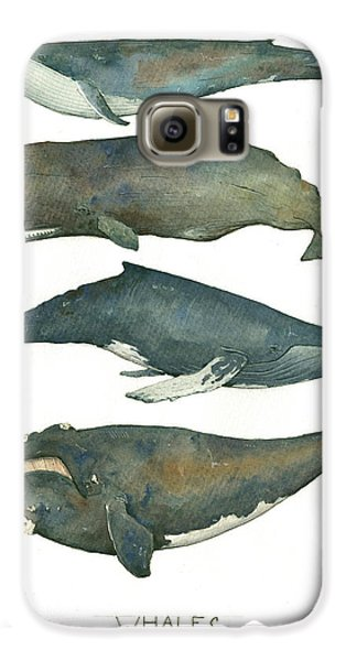 Whales Poster Galaxy S6 Case by Juan Bosco