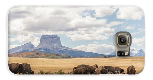 Where The Buffalo Roam Galaxy S6 Case by Alex Lapidus