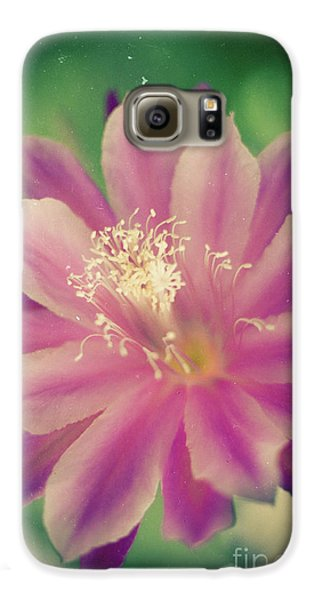 Galaxy S6 Case featuring the photograph Whisper Of Color by Ana V Ramirez