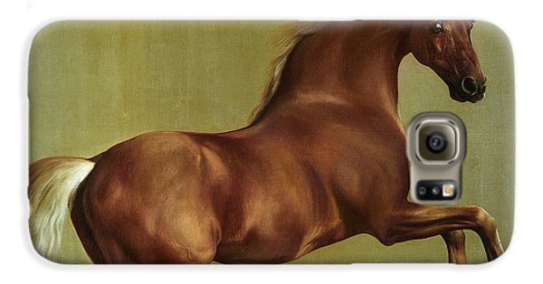 Horse Galaxy S6 Case - Whistlejacket by George Stubbs