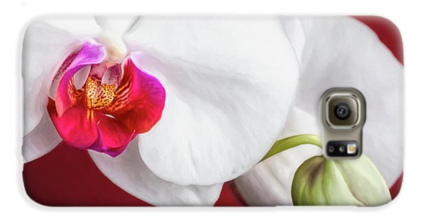 Orchid Galaxy S6 Case - White And Red Orchids by Tom Mc Nemar