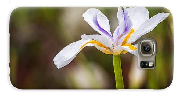 White Beardless Iris Galaxy S6 Case