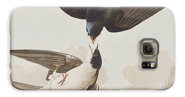 White-bellied Swallow Galaxy S6 Case by John James Audubon