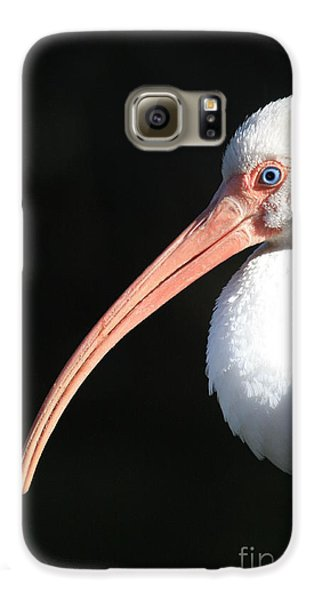 White Ibis Profile Galaxy S6 Case