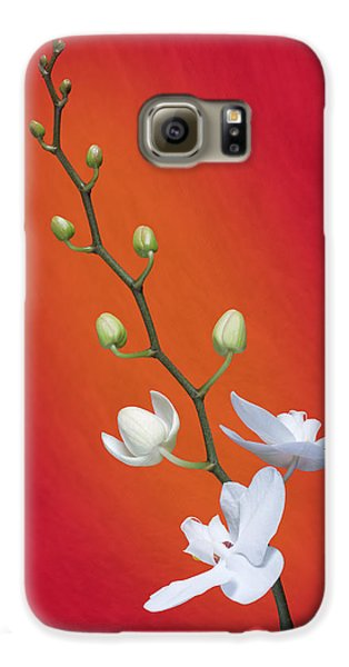 White Orchid Buds On Red Galaxy S6 Case by Tom Mc Nemar