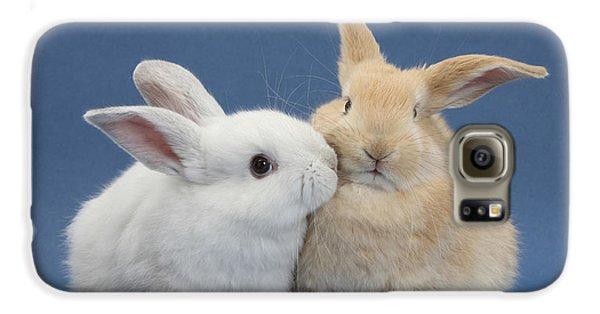 White Rabbit And Sandy Rabbit Galaxy S6 Case