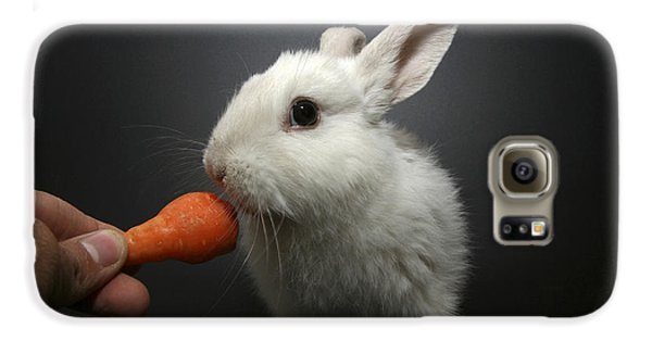 White Rabbit  Galaxy S6 Case by Yedidya yos mizrachi