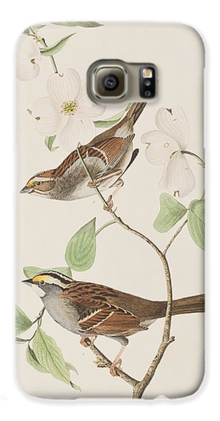 White Throated Sparrow Galaxy S6 Case by John James Audubon