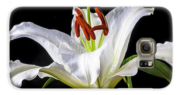 White Tiger Lily Still Life Galaxy S6 Case by Garry Gay