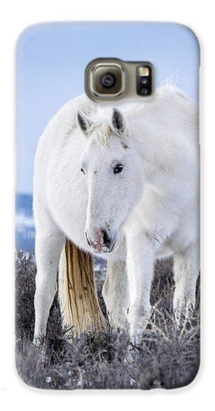White Wild Horse Mystic Of Sand Wash Basin Galaxy S6 Case