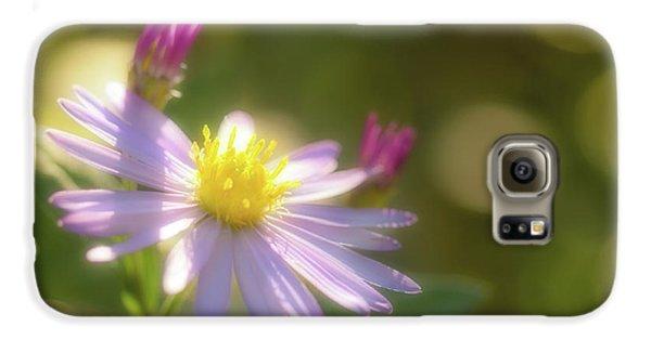 Wild Chrysanthemum Galaxy S6 Case by Tatsuya Atarashi