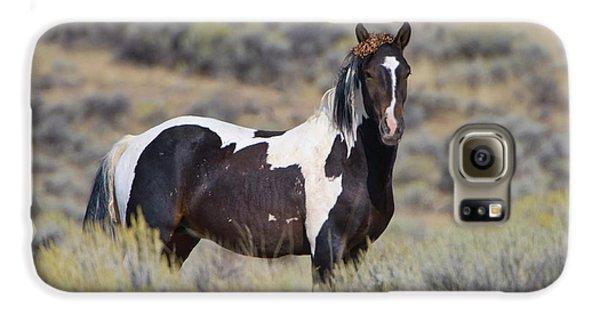 Wild Horse 14 Galaxy S6 Case
