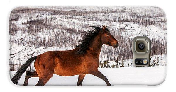 Wild Horse Galaxy S6 Case
