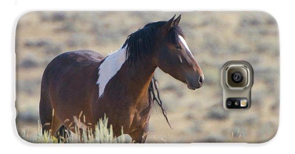 Wild Mustang 1 Galaxy S6 Case