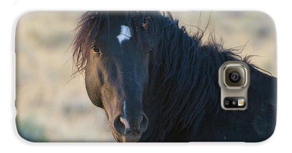 Wild Mustang 4 Galaxy S6 Case