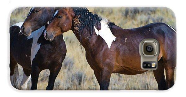 Wild Mustang 5 Galaxy S6 Case