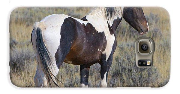 Wild Mustang 6 Galaxy S6 Case