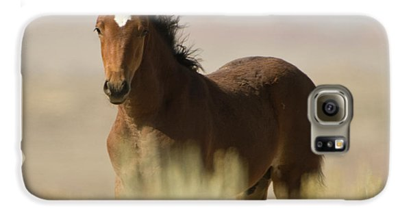 Wild Mustang Colt Galaxy S6 Case