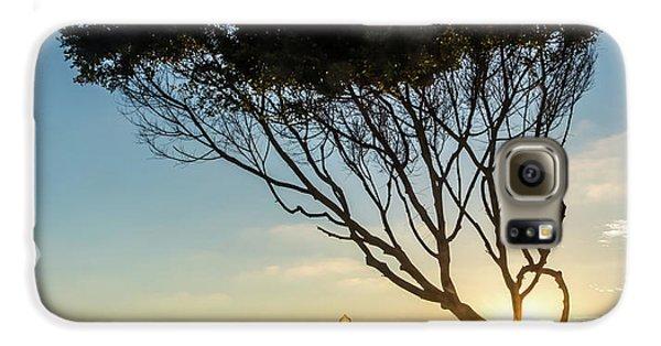 Wind Blown Tree Galaxy S6 Case