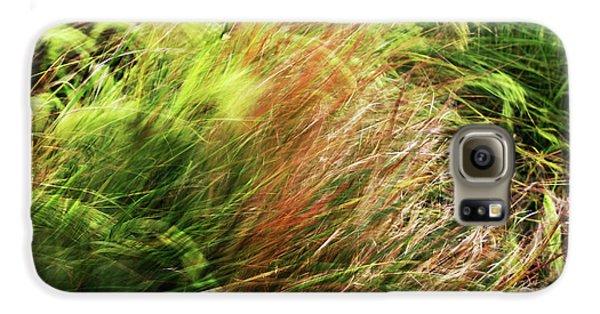 Windblown Grasses Galaxy S6 Case by Nareeta Martin